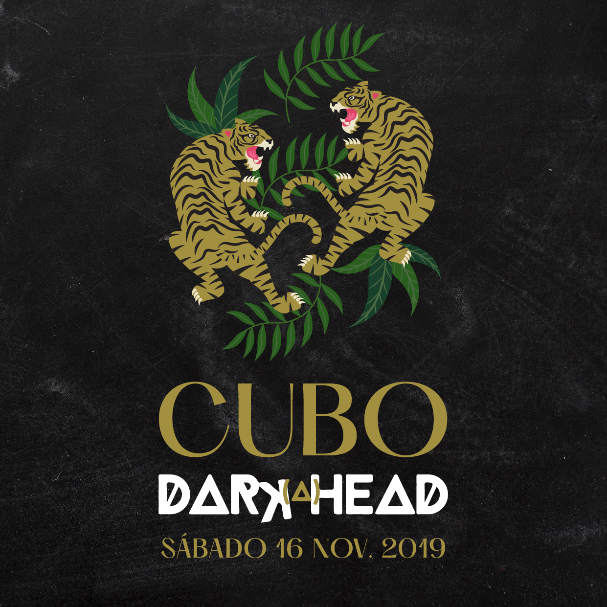 Cubo: Darkahead 16 nov. 2019