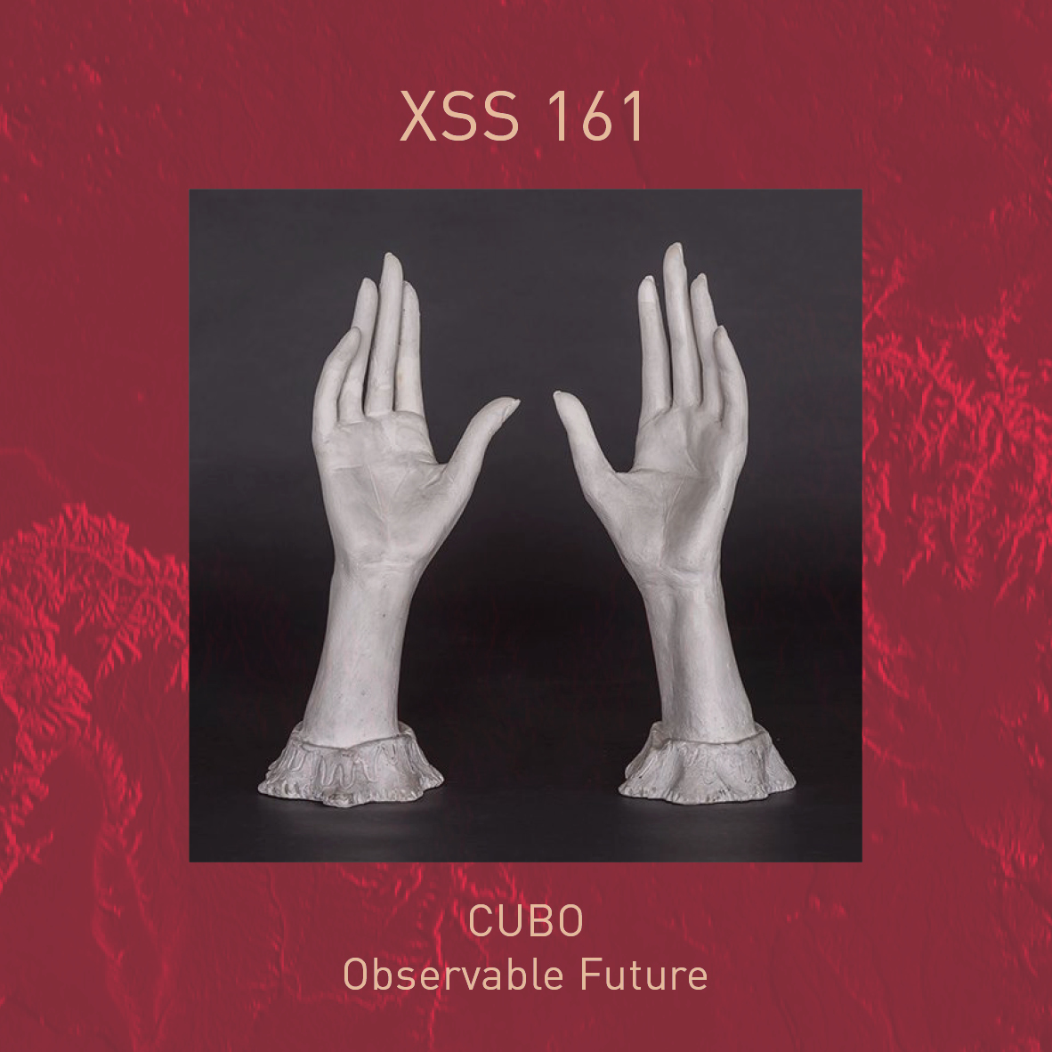 XSS161 | Cubo | Observable Future