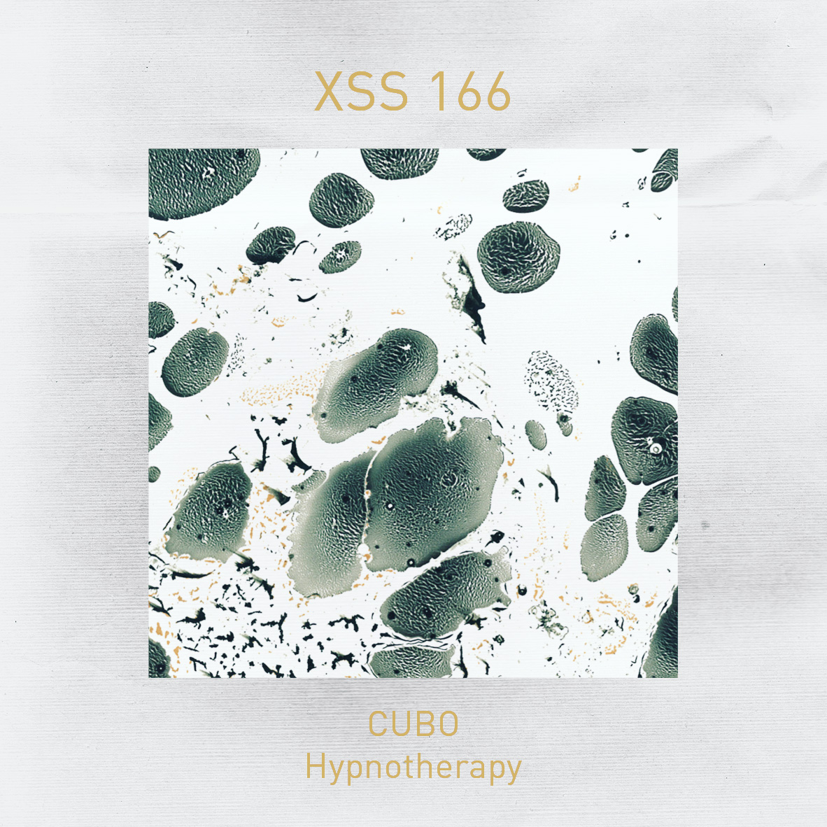 XSS166 | Cubo | Hypnotherapy