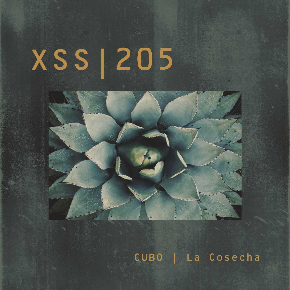 XSS205 | Cubo | La Cosecha