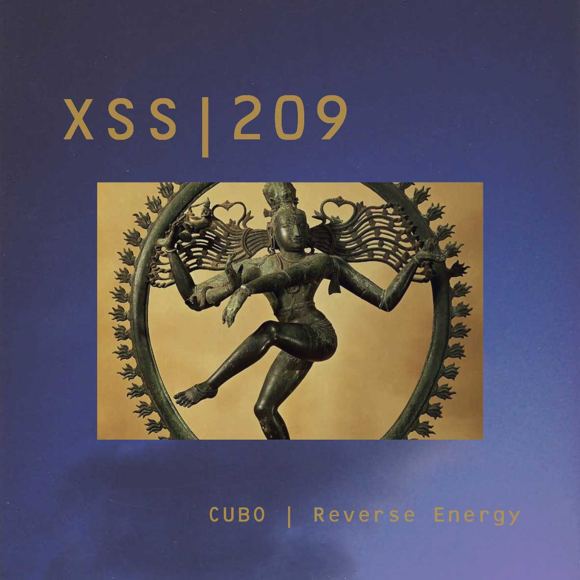 XSS209 | Cubo | Reverse Energy