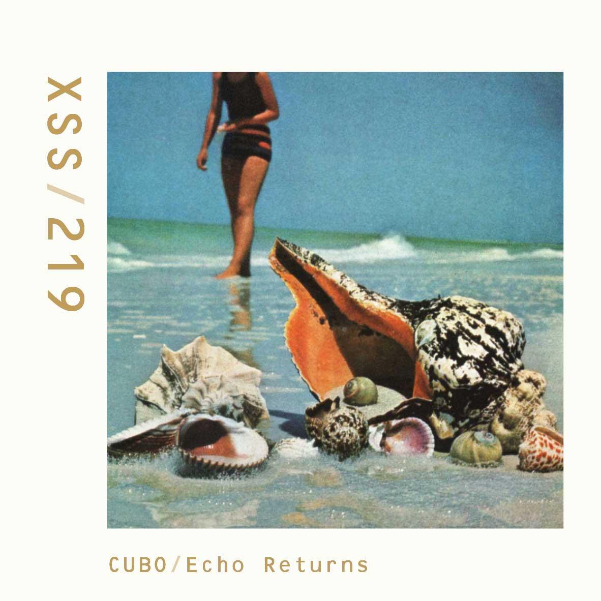 XSS219 | Cubo | Echo Returns