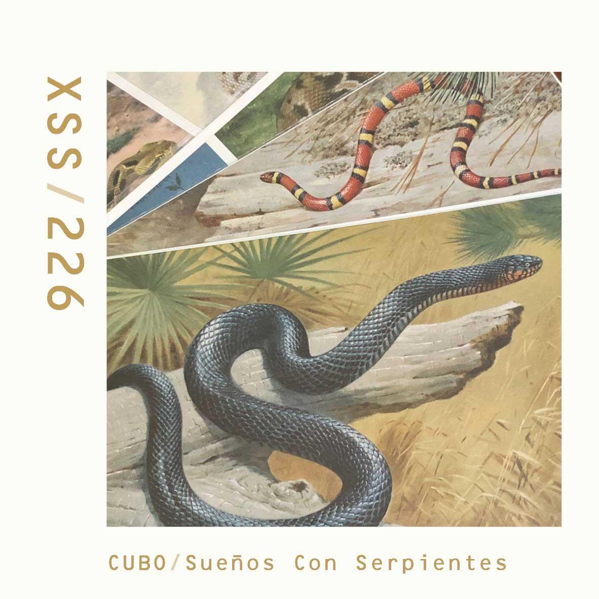 XSS226 | Cubo | Sueños Con Serpientes